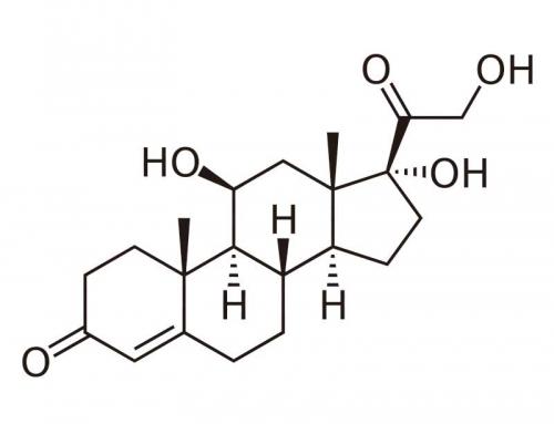 Cortisone Cream…Friend or Foe?