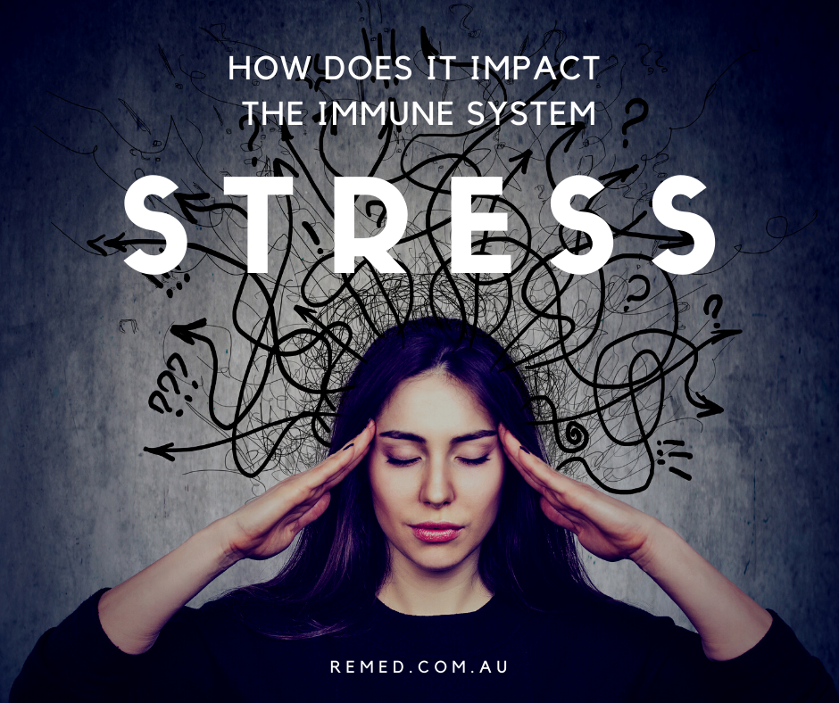 stress on the immune system